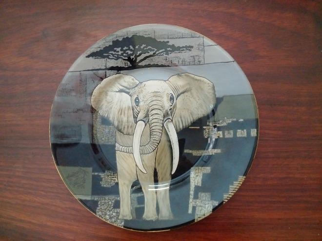 éléphant de face